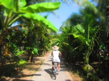 Day 2 started with a bike around the beautiful coconut growing region of the Mekong.